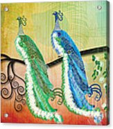 Peacock Love Acrylic Print