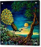 Peacock Strolls On The Beach Acrylic Print