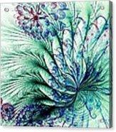 Peacock Tail Acrylic Print