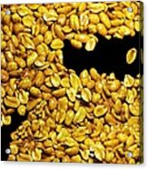 Peanut Brittle Acrylic Print