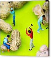 Peanut Workers Little People On Food Acrylic Print