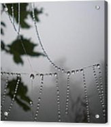 Pearls From Heaven Acrylic Print