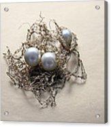 Pearls Acrylic Print by Lali Kacharava