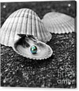 Pearls Of Wisdom I Acrylic Print