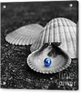 Pearls Of Wisdom II Acrylic Print