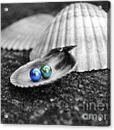 Pearls Of Wisdom IIi Acrylic Print