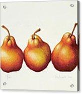 Pears Acrylic Print by Annabel Barrett