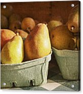 Pears Acrylic Print by Caitlyn  Grasso