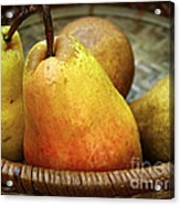 Pears In A Basket Acrylic Print