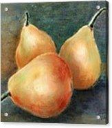 Pears Still Life Acrylic Print