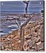 Pebble Beach 4 Acrylic Print