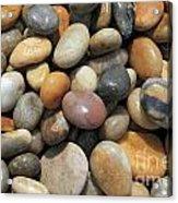 pebble beach Chesil UK  Acrylic Print