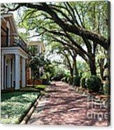 Pebble Hill Plantation Walkway Acrylic Print