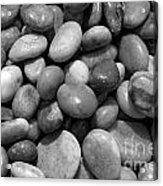 Pebbles Chesil Uk  Acrylic Print