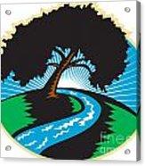 Pecan Tree Winding River Sunrise Retro Acrylic Print
