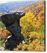 Pedestal Rock Acrylic Print
