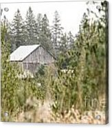 Peek At Our Farm Acrylic Print