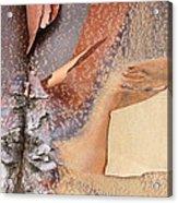 Peeling Bark - Horizontal Acrylic Print