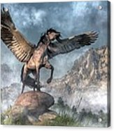 Pegasus Acrylic Print by Daniel Eskridge