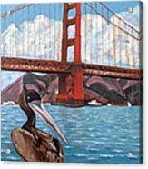 Pelican  And Bridge Acrylic Print
