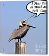 Pelican Miss You Card Acrylic Print