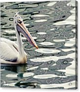 Pelican With Abstract Water Reflections I Acrylic Print
