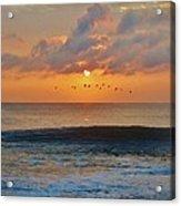 Pelicans At Sunrise 9 10/18 Acrylic Print
