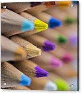Pencils Colored Macro 5 Acrylic Print