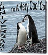 Penguin Anniversary Card Acrylic Print