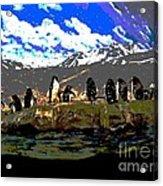 Penguins Line Dance Posterized 2 Acrylic Print