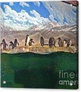 Penguins On Ice Acrylic Print
