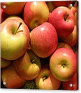 Pennsylvania Apples Acrylic Print