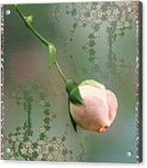 Penny Postcard Chinoiserie Acrylic Print