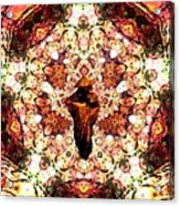 Pentagrammathanatos Severe Beauty Acrylic Print