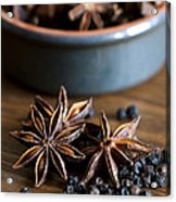 Pepper And Spice Acrylic Print by Anne Gilbert