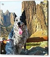 Pepper At Smith Rock Acrylic Print