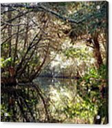 Pepper Creek Acrylic Print