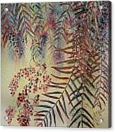Pepper Tree Acrylic Print