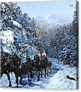 Percheron Team In Snow Acrylic Print by Ric Soulen