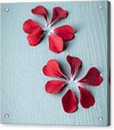 Perfect Petals Acrylic Print