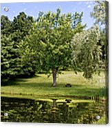 Perfect Spot For A Picnic Acrylic Print