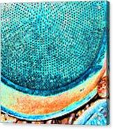 Perforated II Acrylic Print
