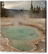 Perforated Pool In West Thumb Geyser Basin Acrylic Print