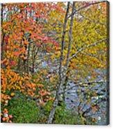 Perkiomen Creek - Perkiomenville Pa - Autumn Foliage Acrylic Print
