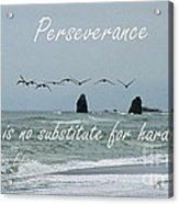 Perseverance Acrylic Print
