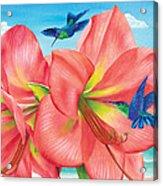 Petal Passion Acrylic Print