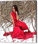 Petals In The Snow Acrylic Print
