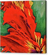 Petals Of Fire Two Acrylic Print