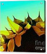 Petals Acrylic Print