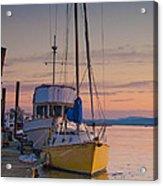 Petaluma River II Acrylic Print